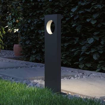 Paulmann Plug & Shine lampione LED Ivo