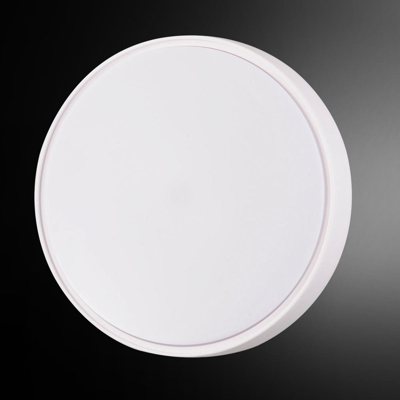 LED-plafondlampa Hatton IP65 30 cm för klart ljus