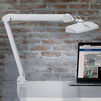 LED pracovní lampa MAULintro se svorkou