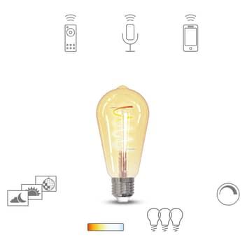 Müller Licht tint LED-lampa Retro guld E27 5,5 W