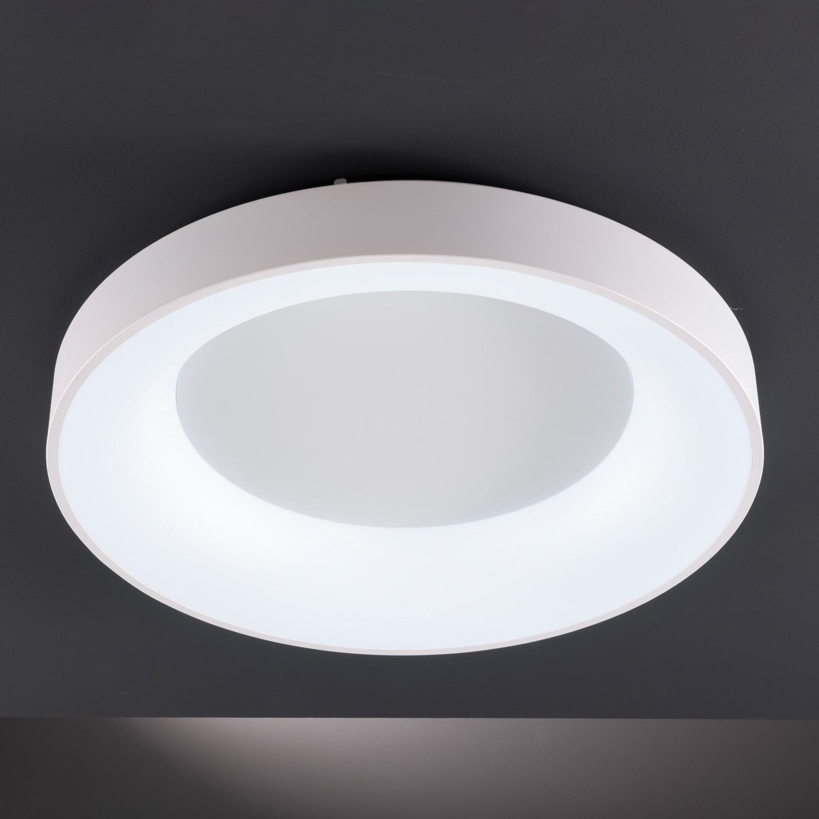 LED plafondlamp Cameron m. afstandsbed, Ø45cm
