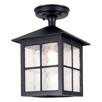Buiten plafondlamp Winchester BL18A