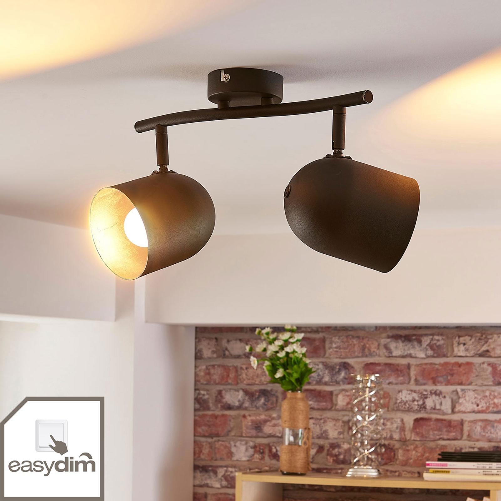 LED-spot Morik med to lys, dimbar