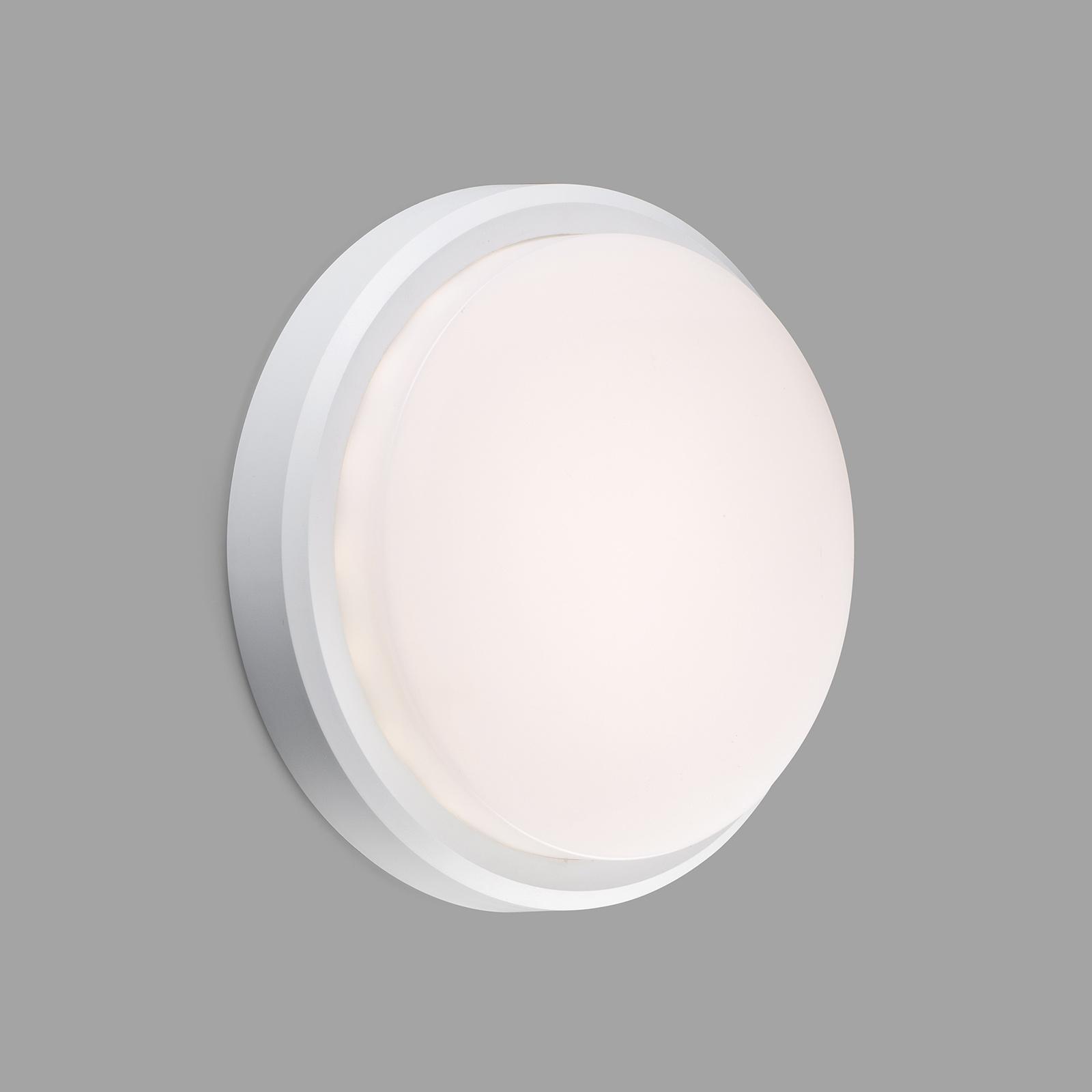 LED-Außenwandleuchte Tom XL, IK10, weiß