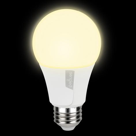 Sengled Twilight bombilla LED resplandor E27 8W