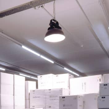 Reflektor do hali LED Ainara