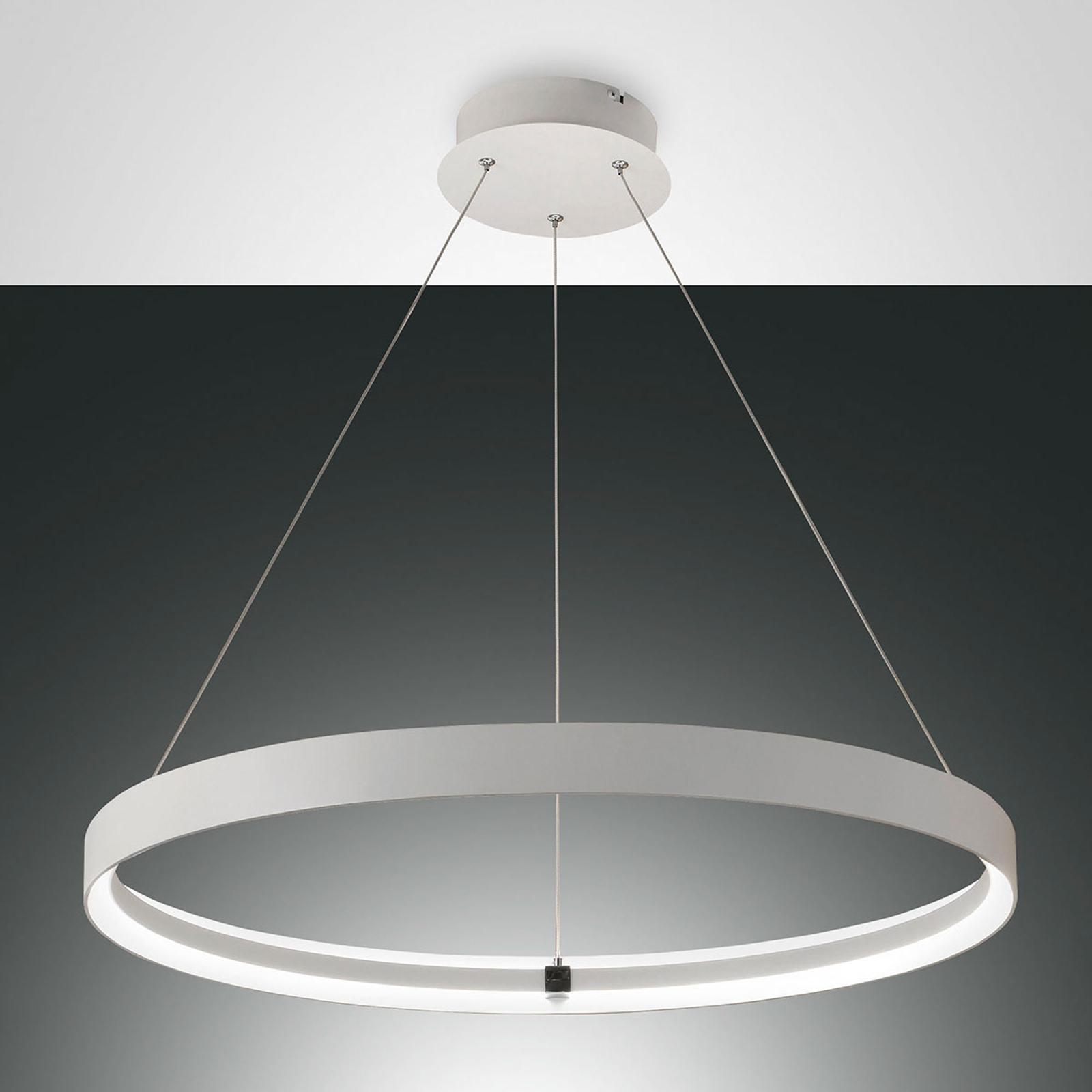 Edele LED hanglamp Double
