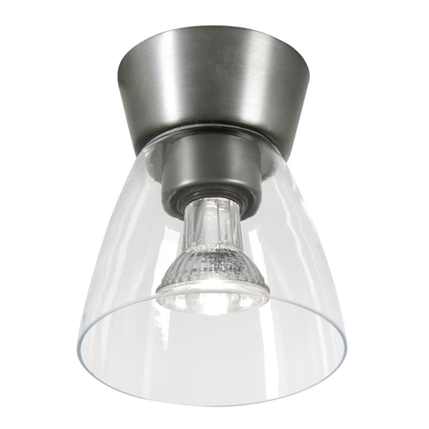 Oxidgrå baldakin taklampa Bizzo klarglas
