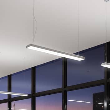 Siteco Taris LED-Pendel EVG DALI dimmbar 123 cm