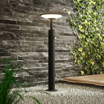 Lampioncino a LED Fenia con sensore, 60 cm