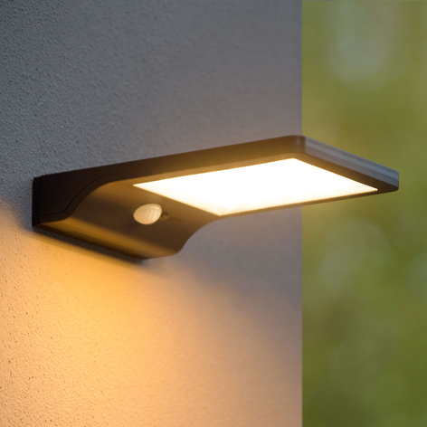 LED-buitenwandlamp op zonne-energie Basic + sensor
