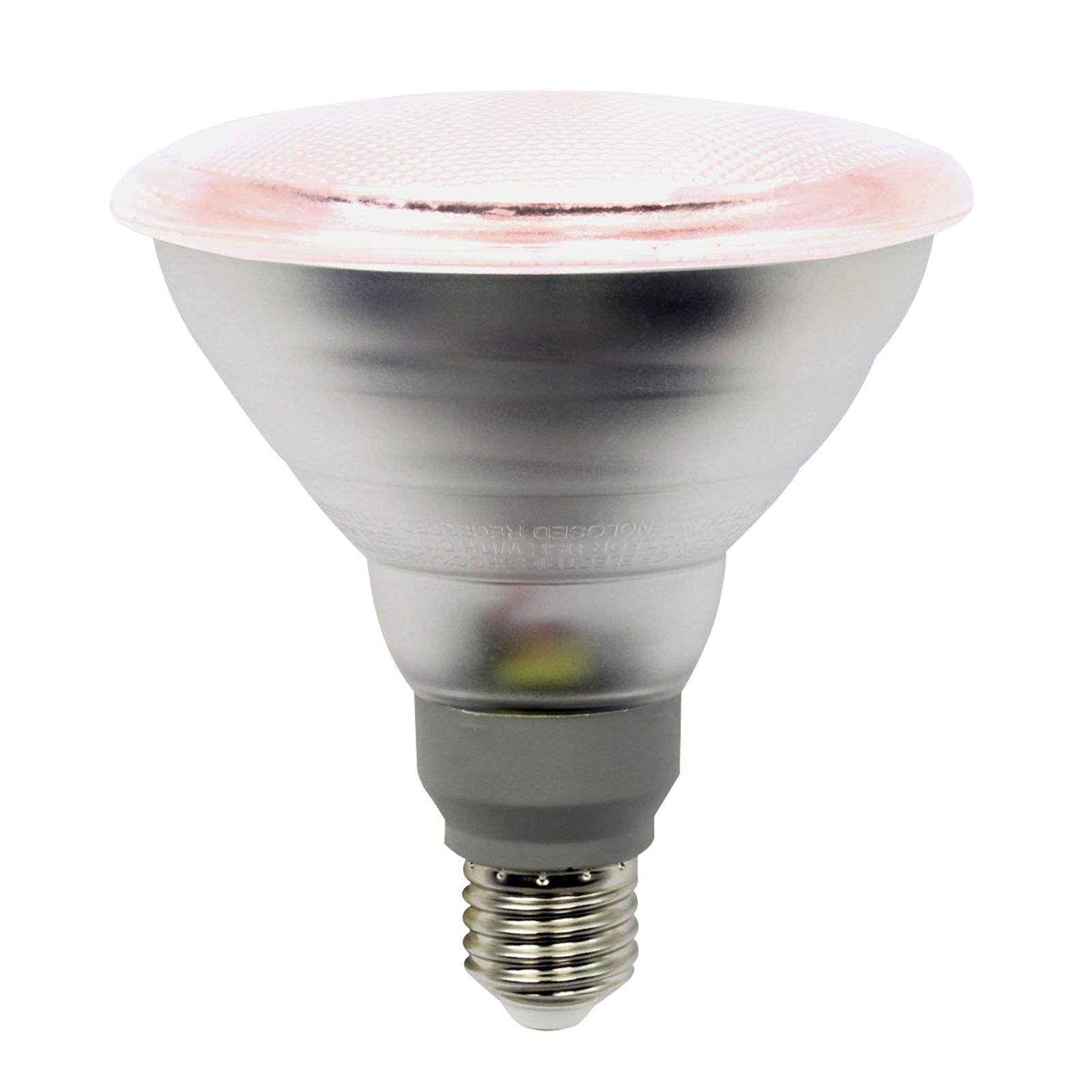 LED-Pflanzenlampe E27 PAR38 12W 50° Abstrahlwinkel