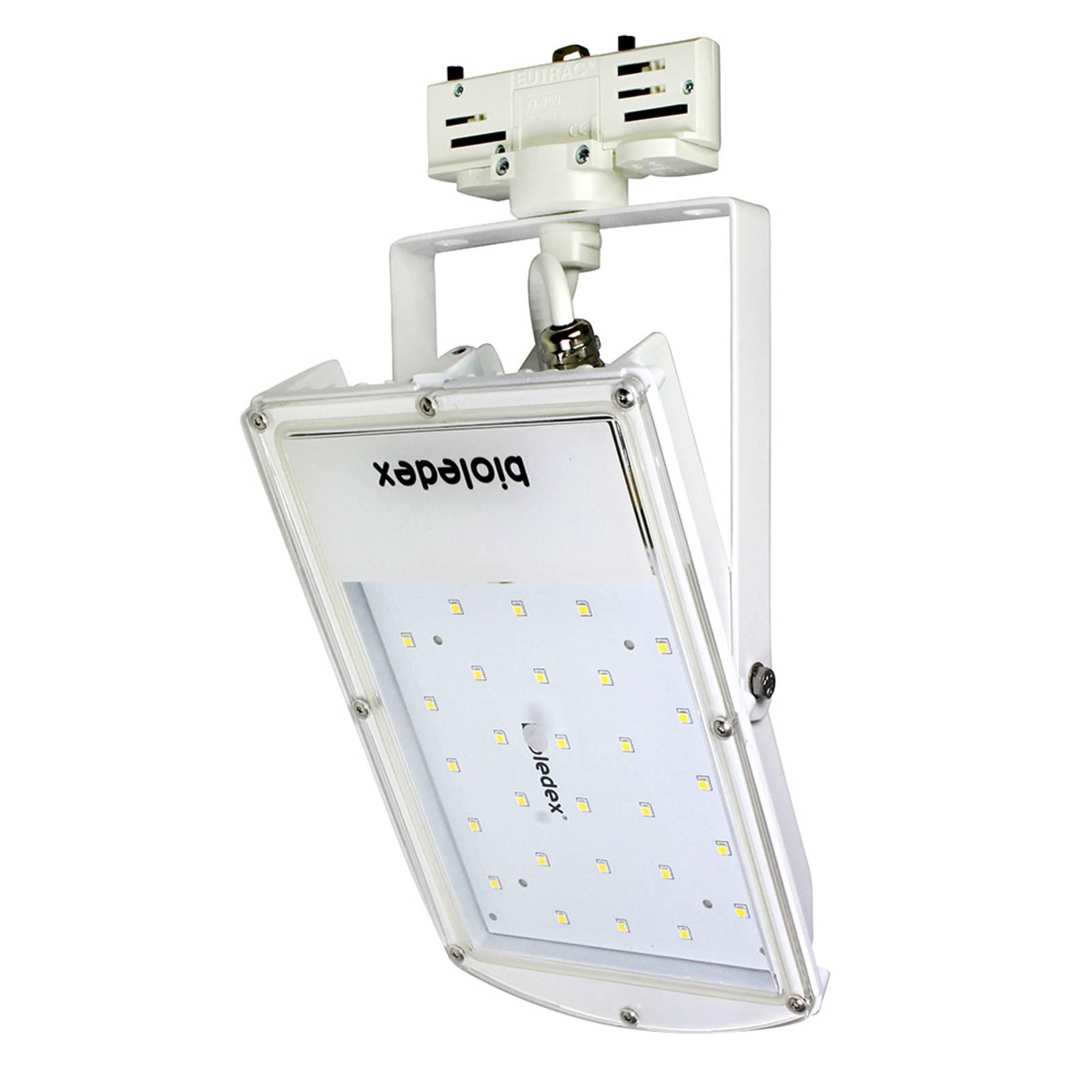 LED spot Astir 3-fase 120° wit 30W 4.000K