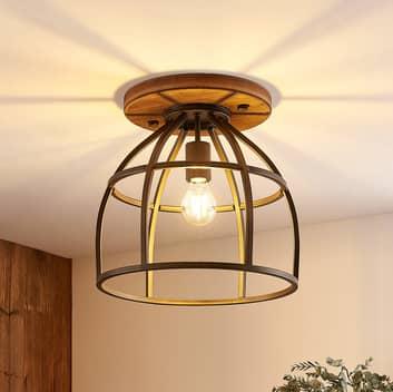 Lindby Rutger lampa sufitowa z klatkowym kloszem