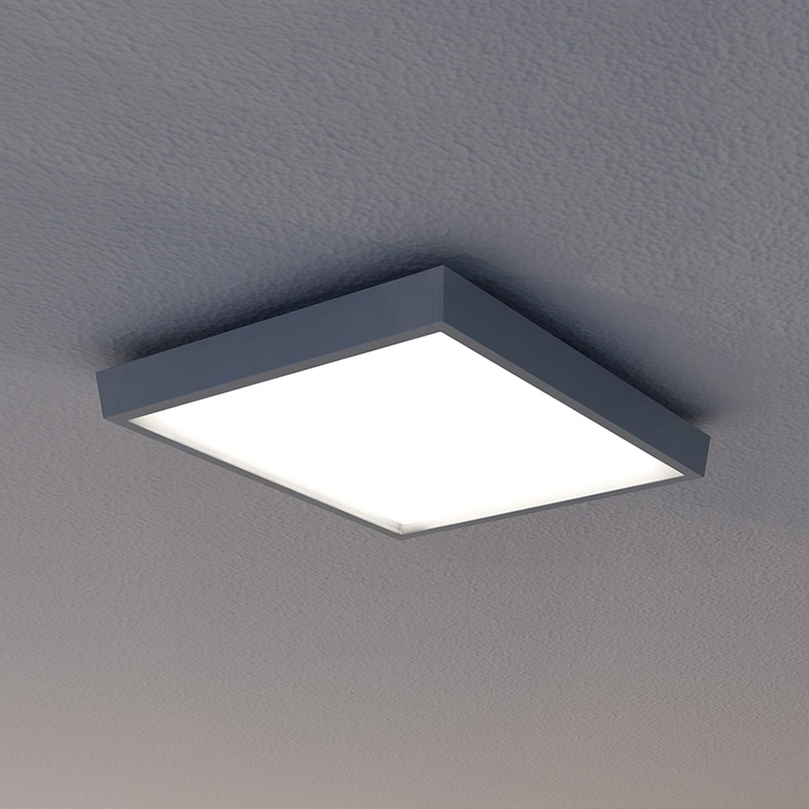 Udendørs loftlampe LED IP54, antracit, 27x27 cm