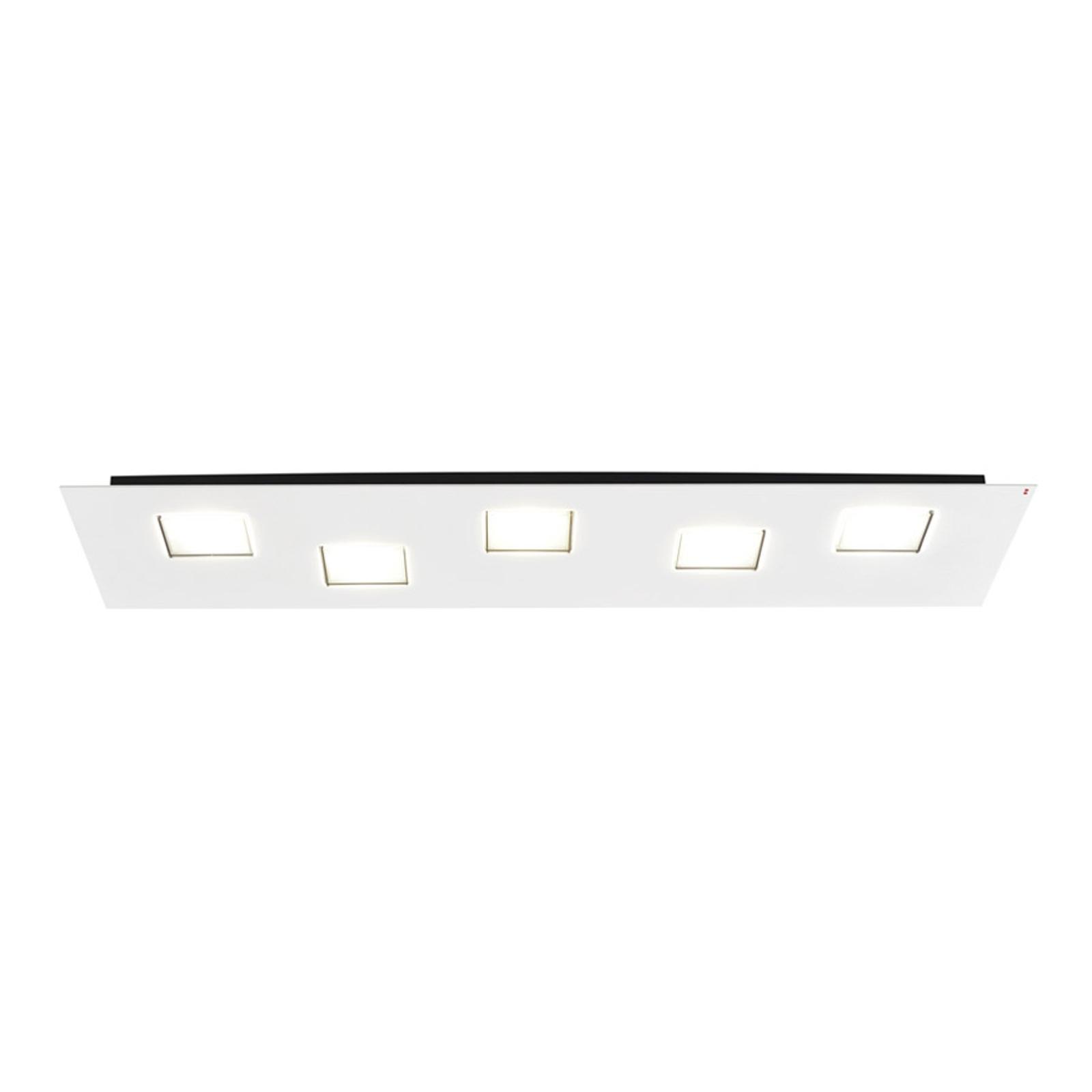 Fabbian Quarter -LED-kattovalo 5-lamp. valkoinen