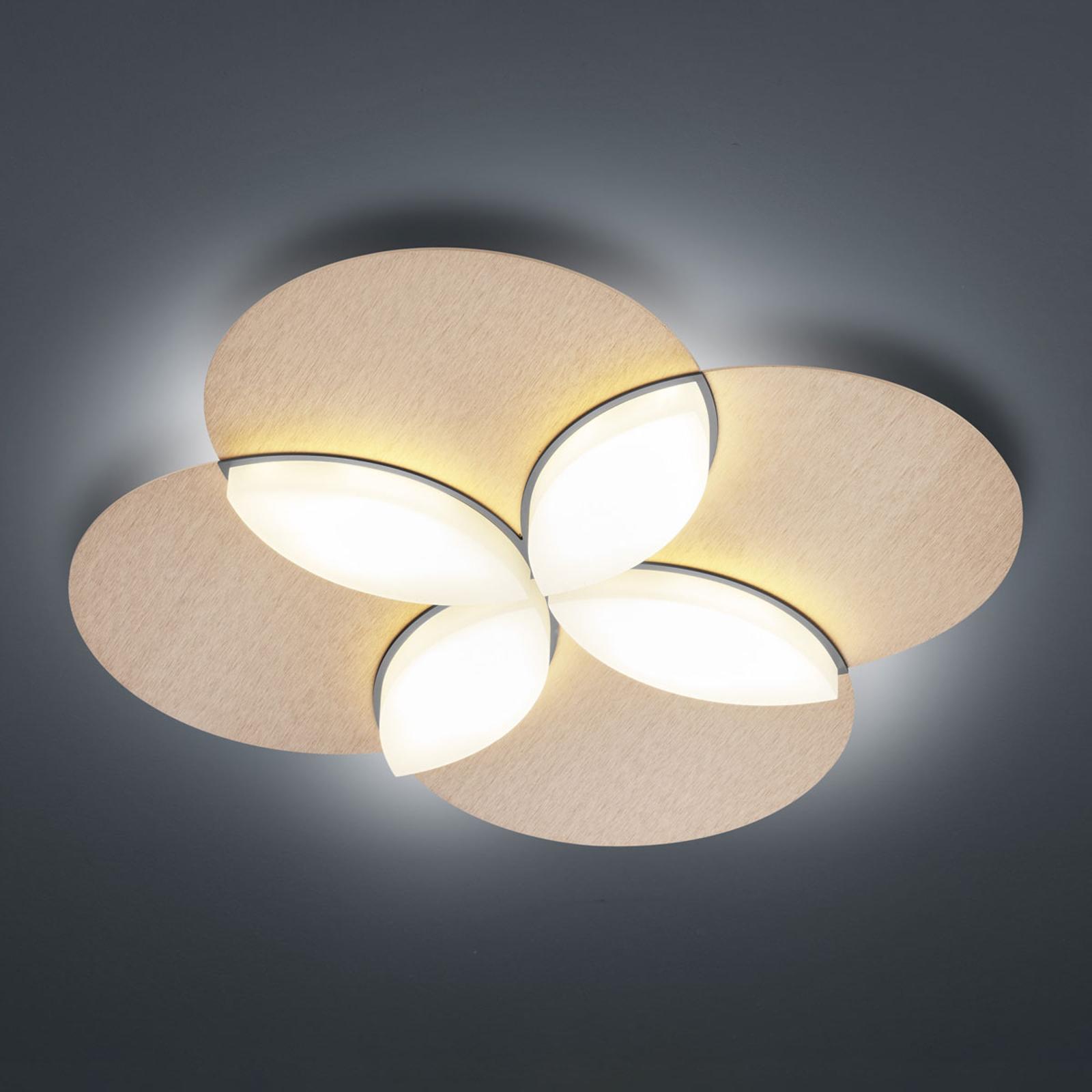 BANKAMP Spring lampa sufitowa LED, różowe złoto