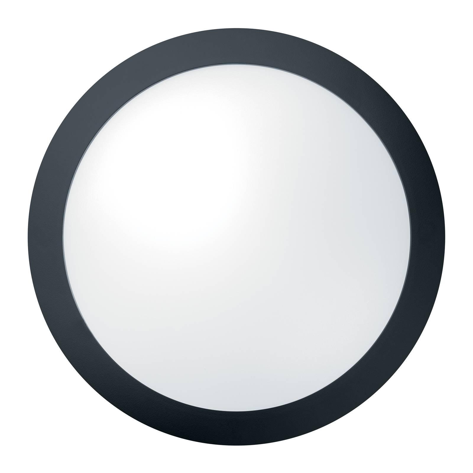 THORNeco Tom Vario Wandleuchte 14W Sensor schwarz