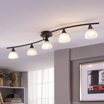 LED plafondlamp Della met 5 lichtbr., langwerpig