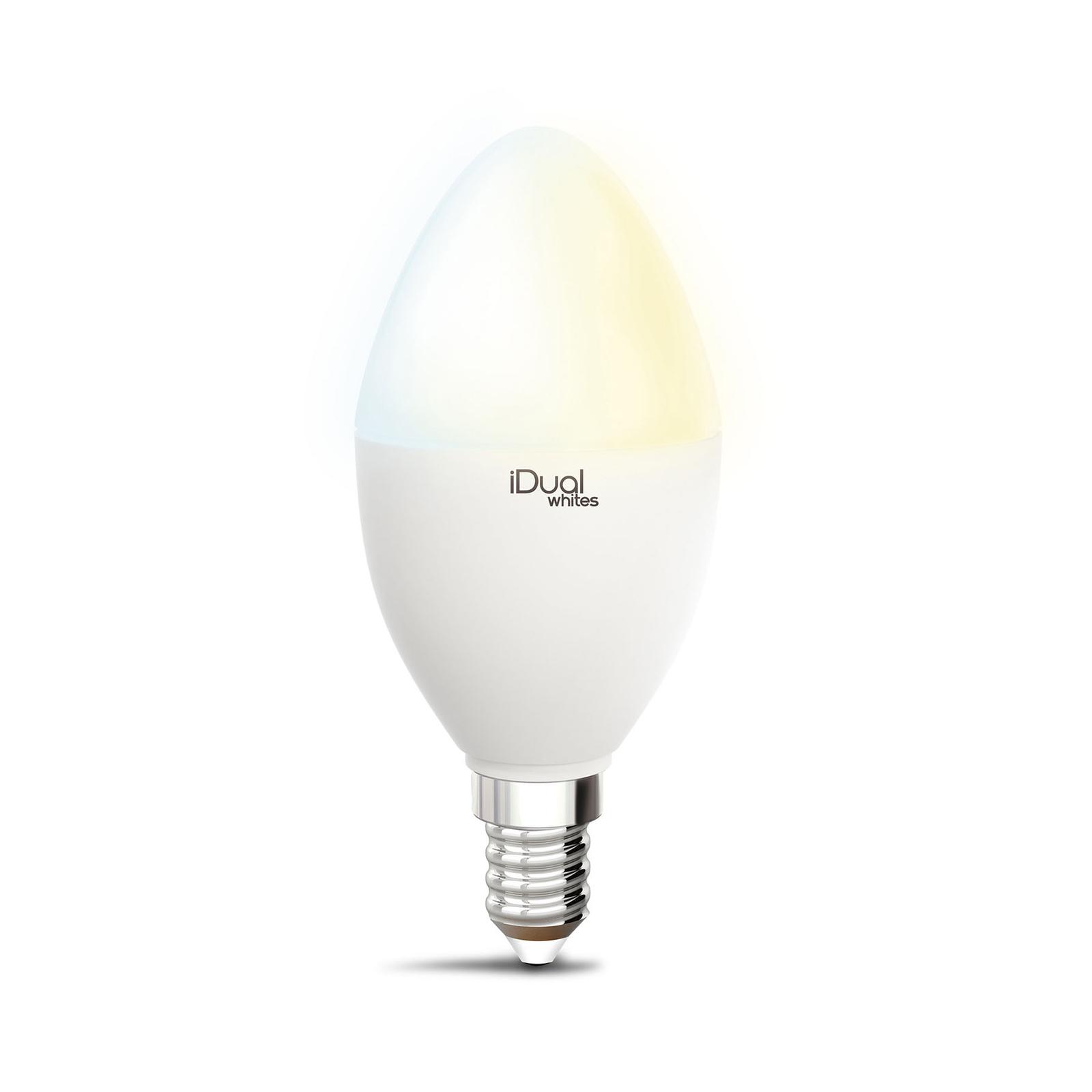 iDual Whites LED-pære mignon P45 E14 5,5W