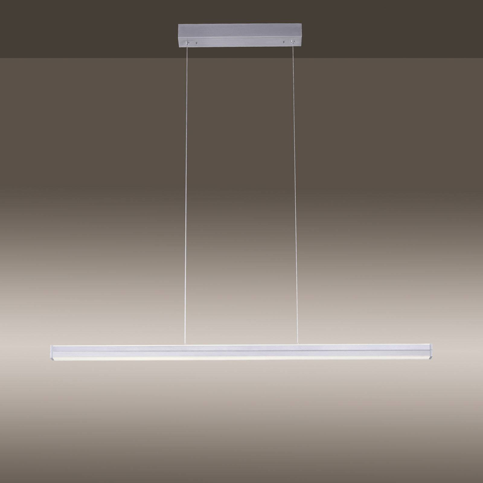 Suspension LED Niro, à 2 lampes, dimmable, CCT