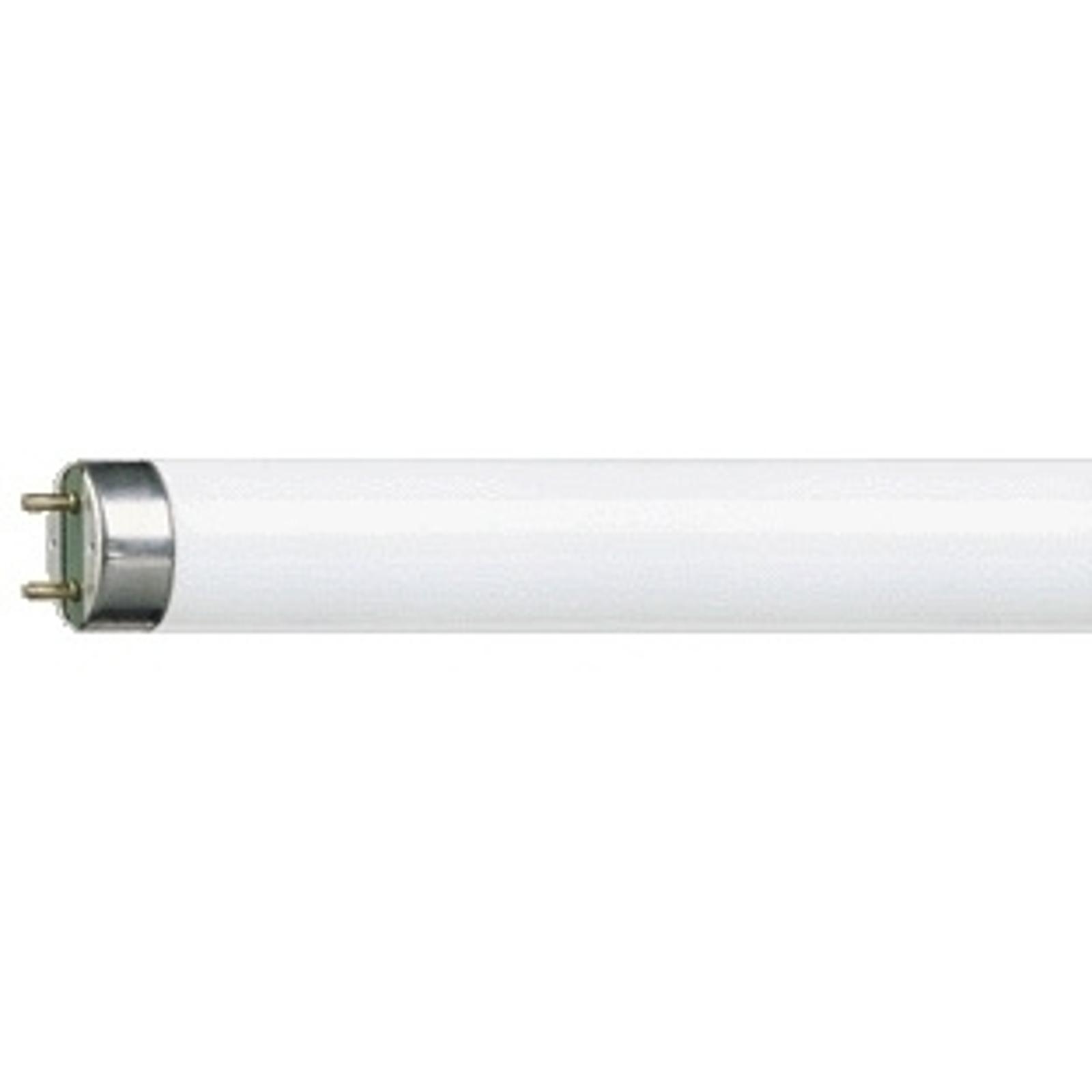 G13 T8-lyspære MASTER TL-D Super 18W/840