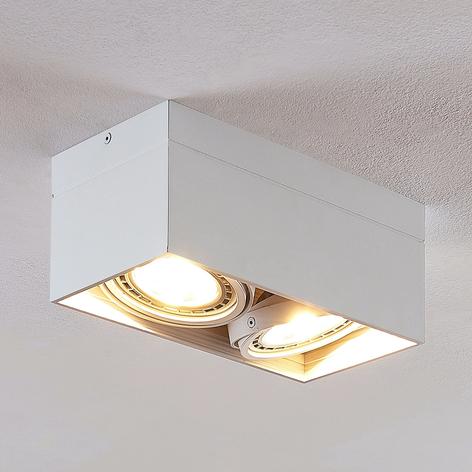 LED-kattospotti Michonne valkoinen, 2-lamppuinen