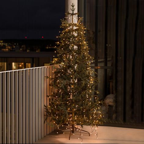Globe LED boomverlichting, voorgem., 240 lampjes