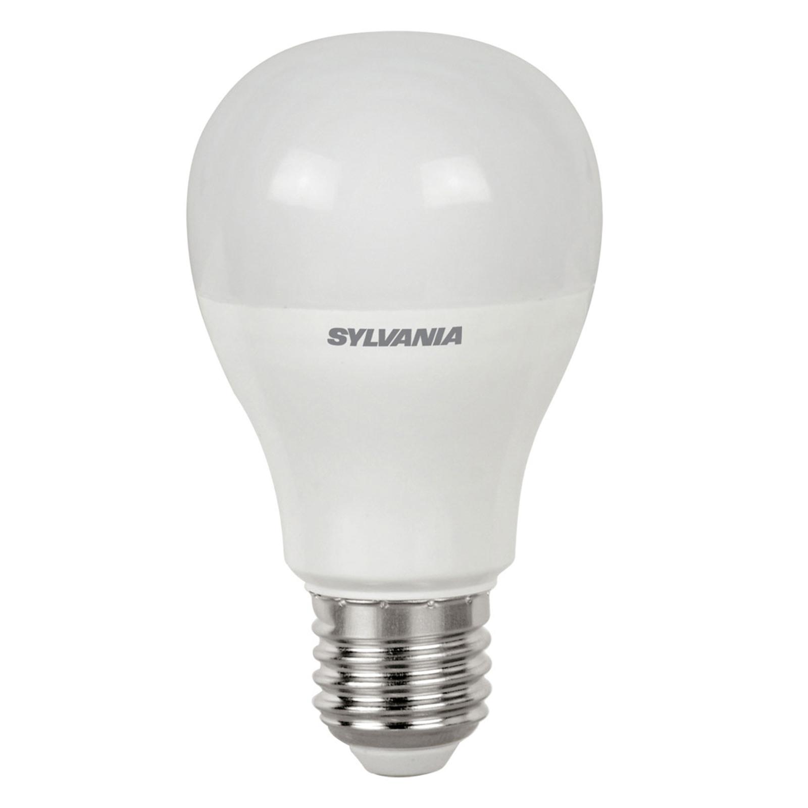 E27 6W 865 LED-pære, matt