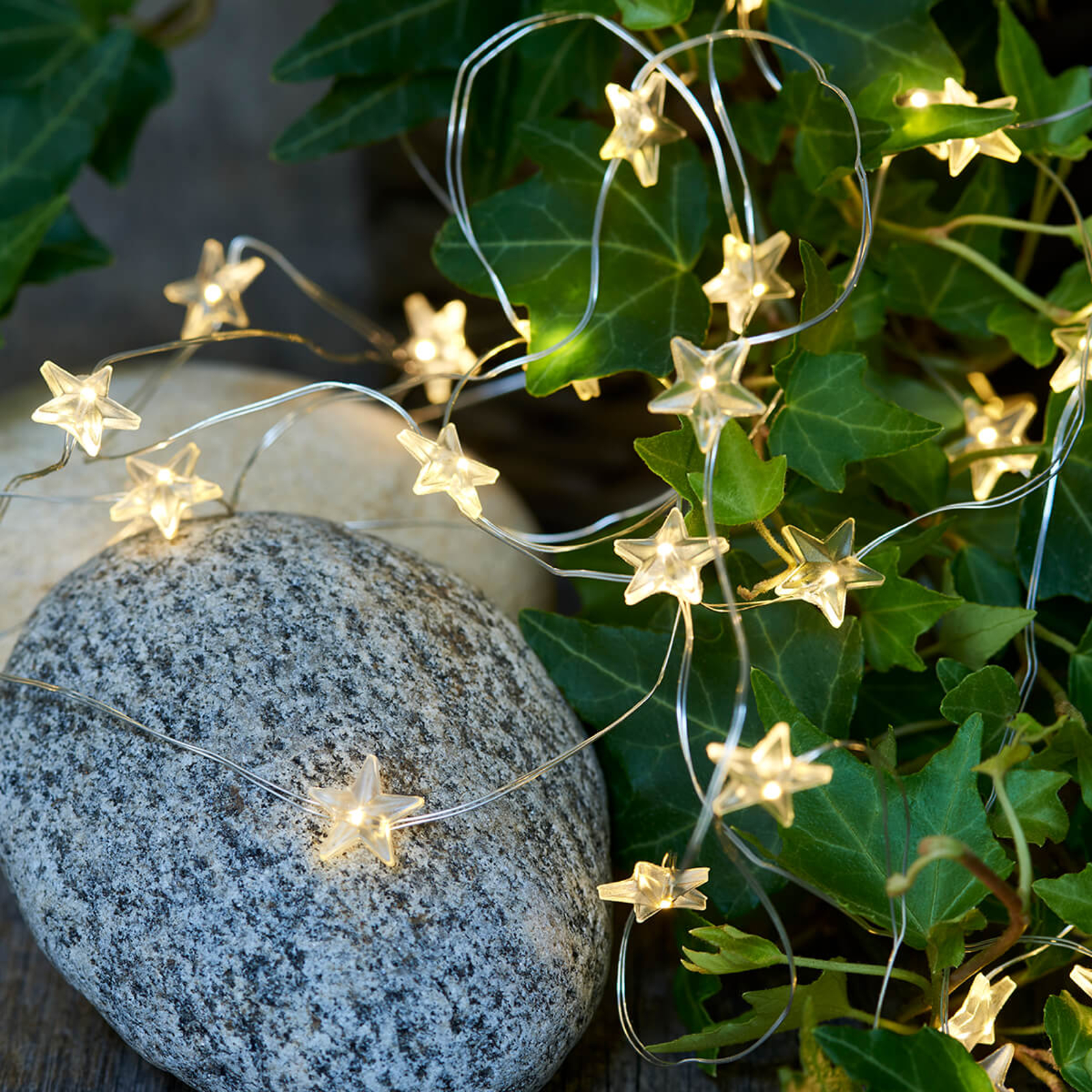 Star string lights Trille with LEDs_8577187_1