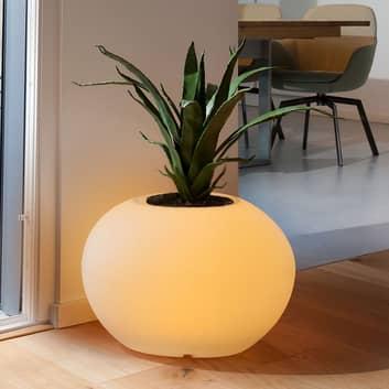 Dekolampe Storus VII LED RGBW, bepflanzbar weiß