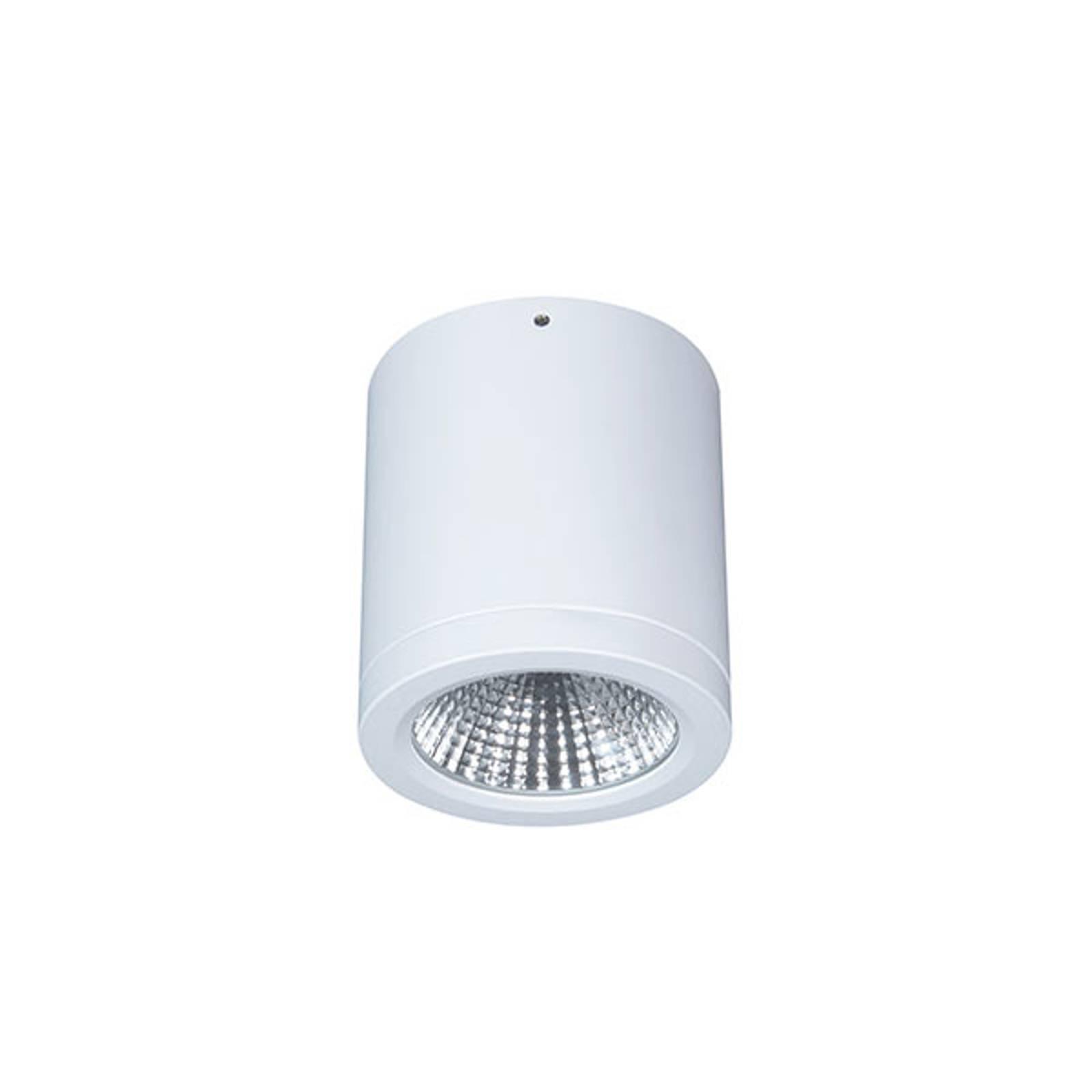 Downlight LED Button Mini 100 IP54 55° 16 W