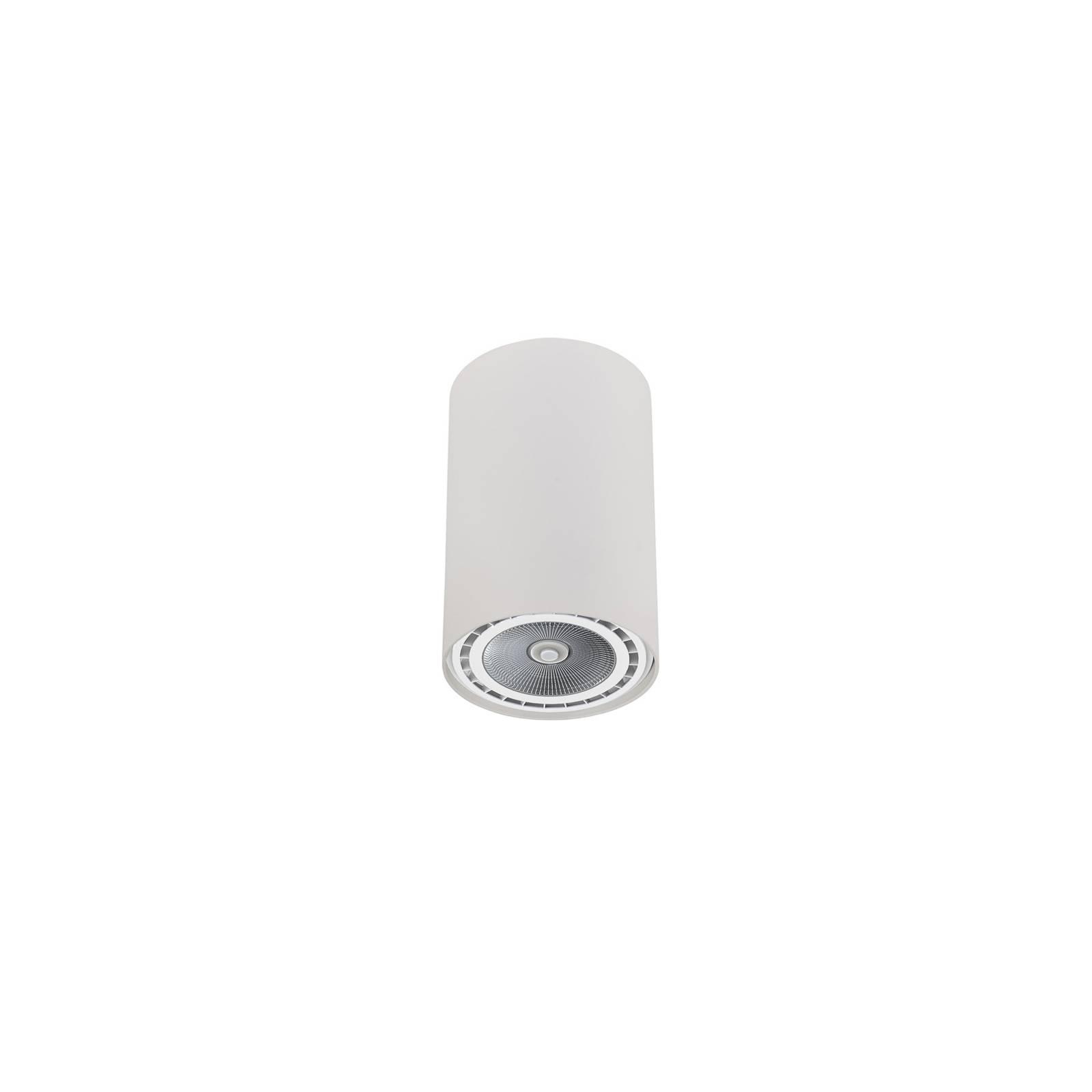 Deckenstrahler Bit in Zylinderform weiß