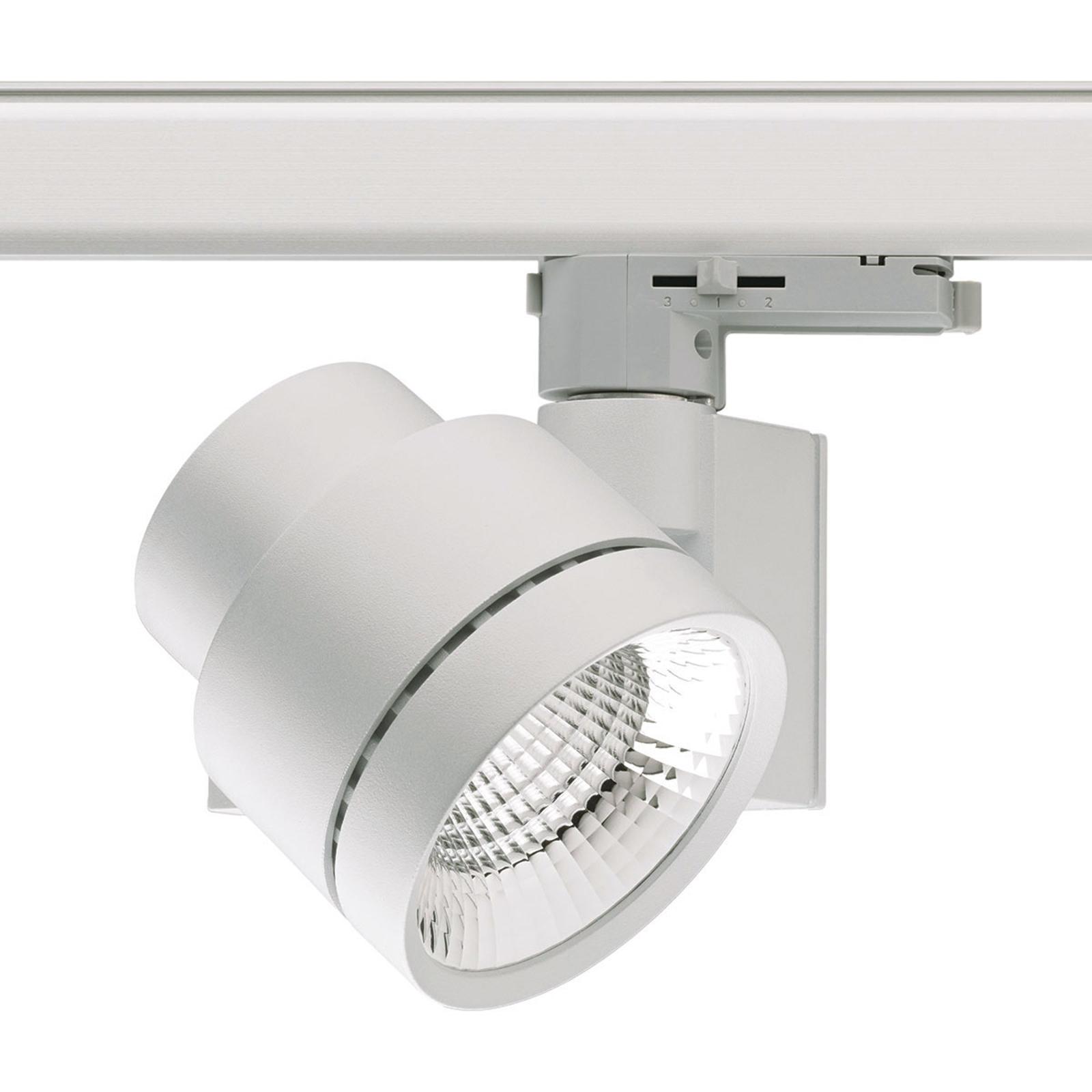 3-Phasen-LED-Schienenstrahler Globo mini 36°