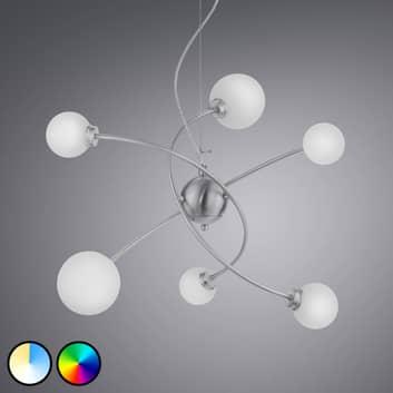 Trio WiZ Dicapo LED-pendellampe, 6 lyskilder