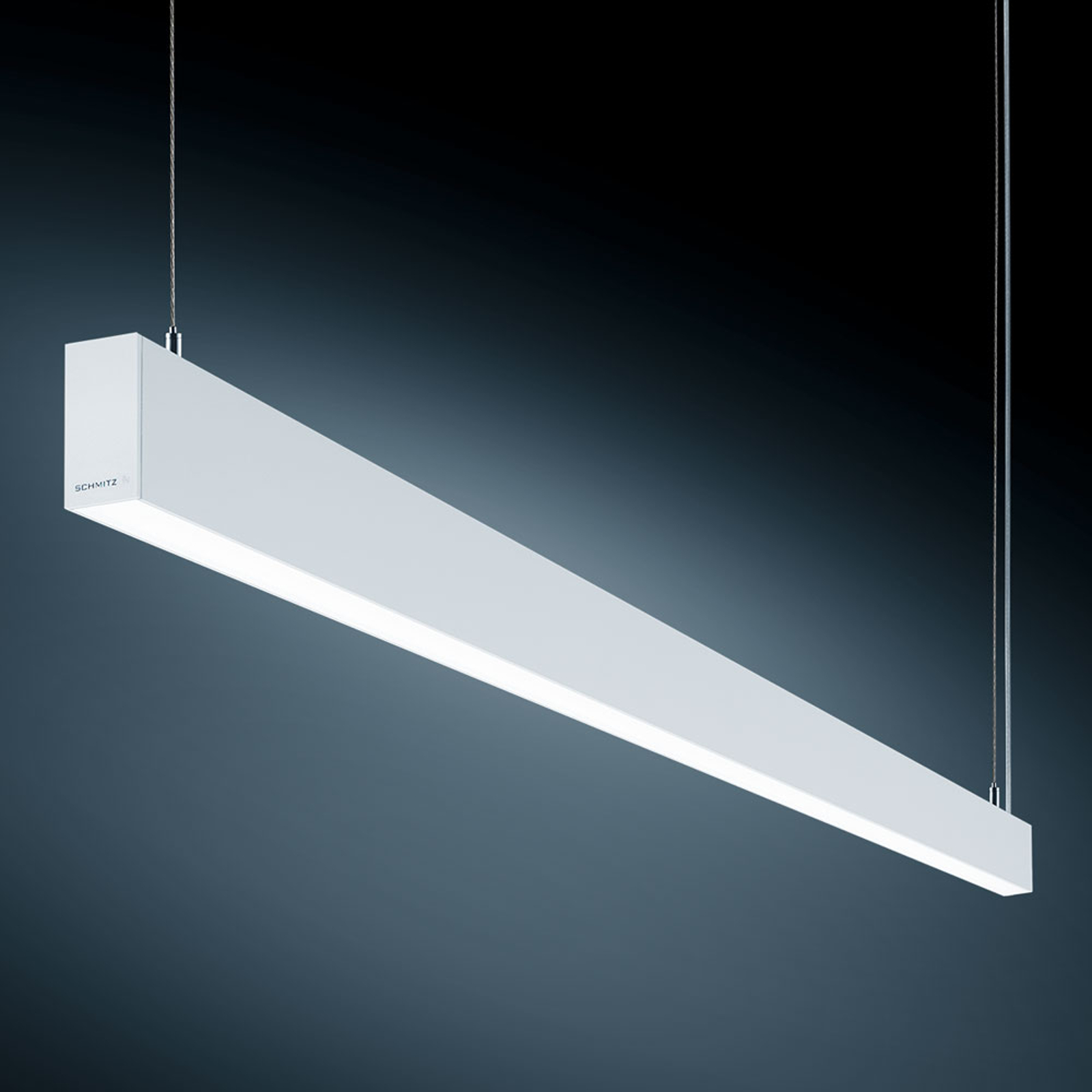 Genormeerd oplichtende LED hanglamp S55