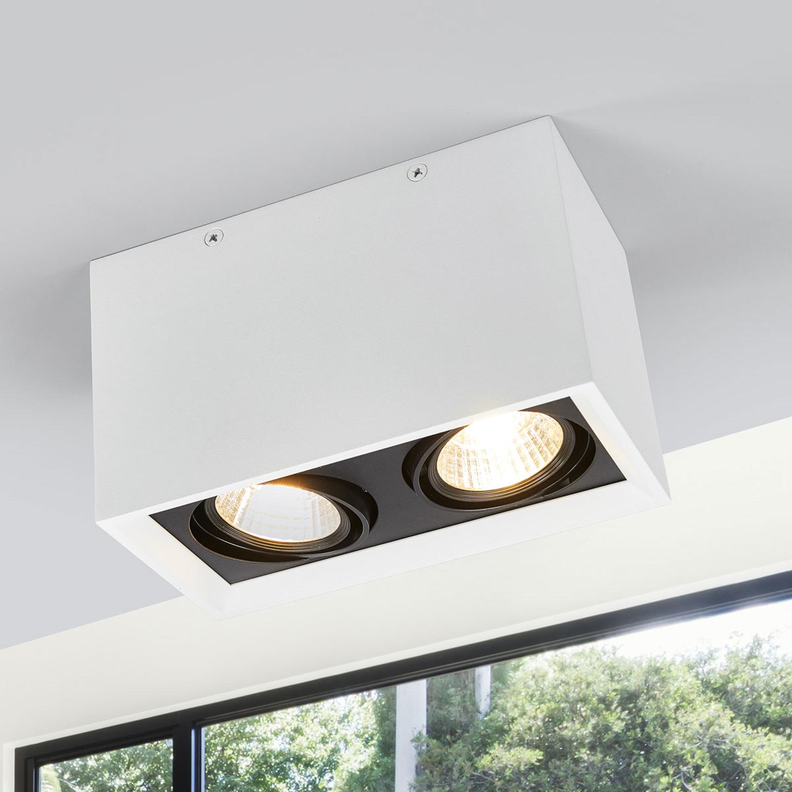 Zweiflammige LED-Deckenlampe Loreen in Weiß