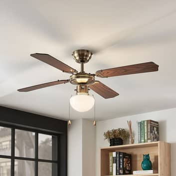 Stropní ventilátor Joulin, osvětlený, dub