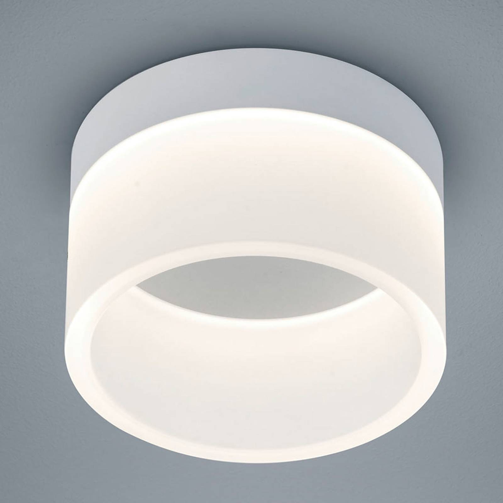 Helestra Liv – lampa sufitowa LED 15 cm