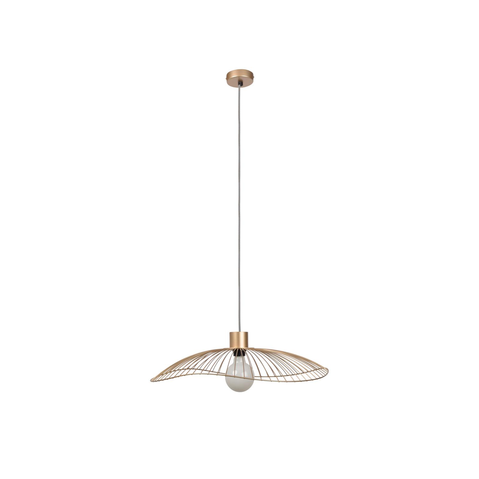Forestier Colibri pendant lamp, dimmable_3567097_1