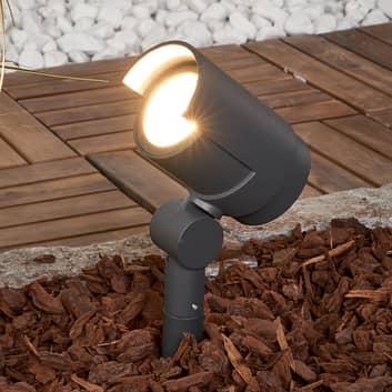 Beatrix spotlampe med jordspyd med LED-pærer
