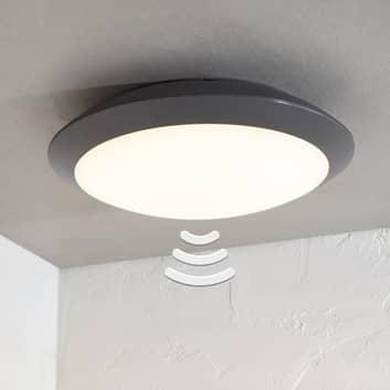 Utendørs LED-taklampe Naira, grå, sensor