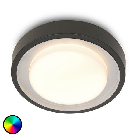 WiZ lámpara exterior LED Origo