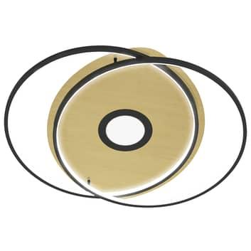 Paul Neuhaus Q-AMIRA plafoniera LED ovale