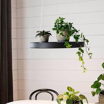 Plate LED-hængelampe