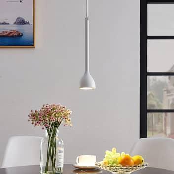 Lámpara colgante Nordwin, 1 luz, blanco-plateado