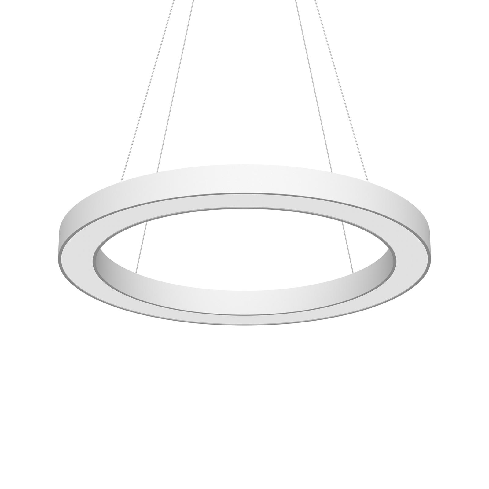 LED-Pendel Cerchio DALI 940 154,4W up/down Ø80cm