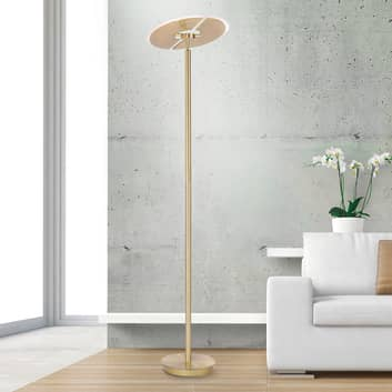 Artur LED-gulvlampe, CCT, kan dæmpes, rund, guld