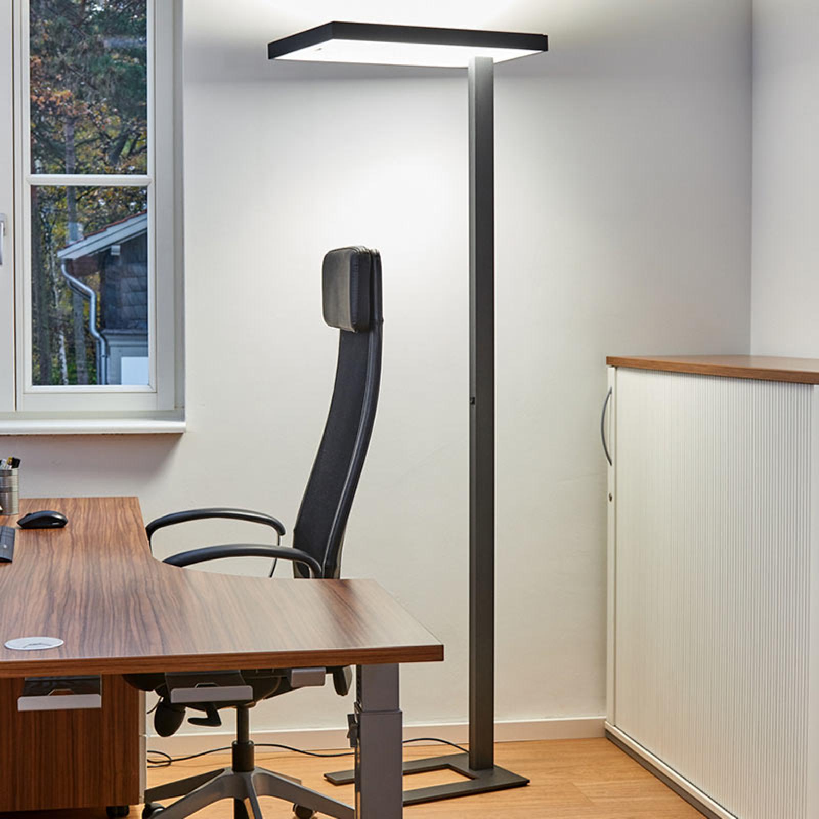 Büro-LED-Stehleuchte Lola, 4.000 K, DALI