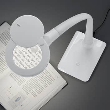 Met voet - LED vergrootglaslamp Lupo in wit